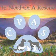 In Need of Rescue Paws poster